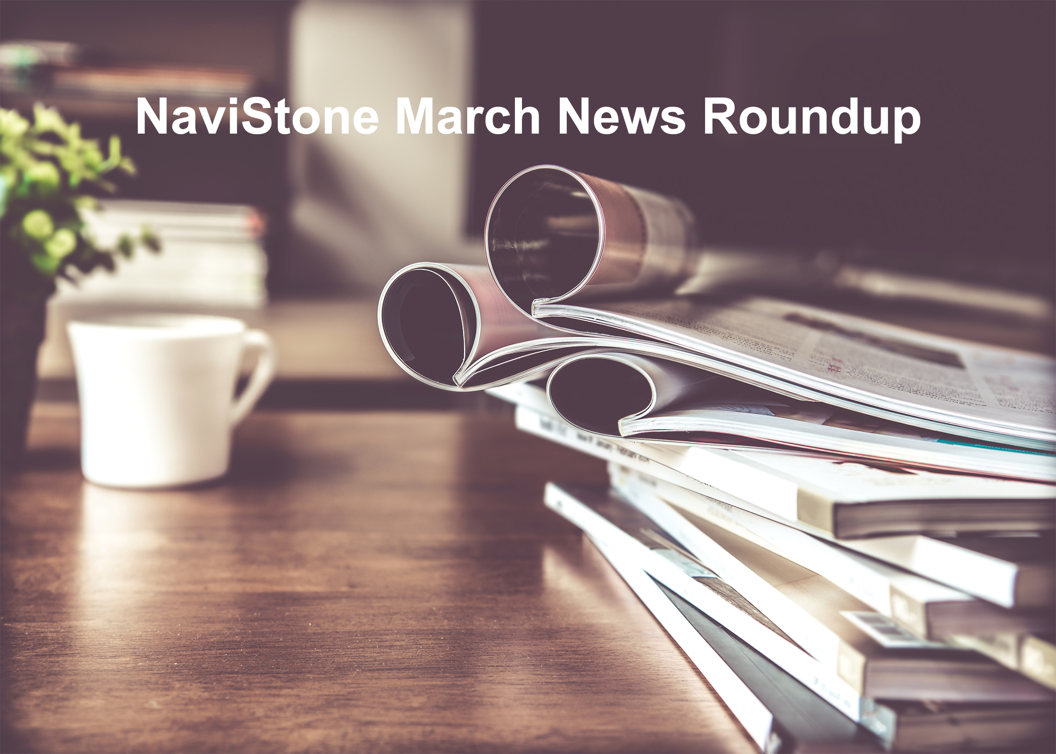 NaviStone March News Roundup